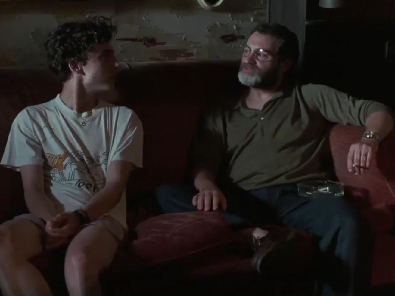 michael-stuhlbarg-and-timothee-chalamet-in-call-me-by-your-name