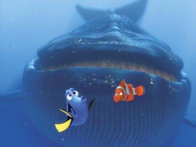 Finding Nemo 3D Fresh Fish