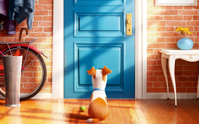 The-secret-life-of-pets-screen-relish